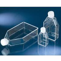 Флакон Nunc Non-treated T25 EasYFlask, Filter Cap