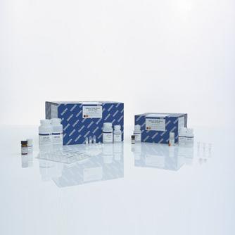 Набор QIAamp DNA Blood Mini Kit