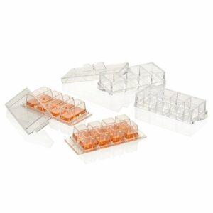Nunc Lab-Tek Chambered Coverglass